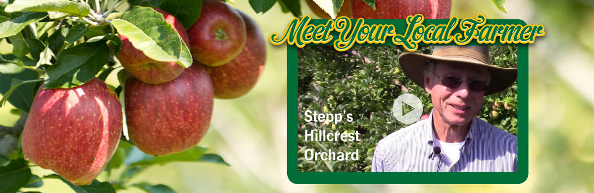stepp-s-orchard