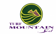 Turf Mountain Sod